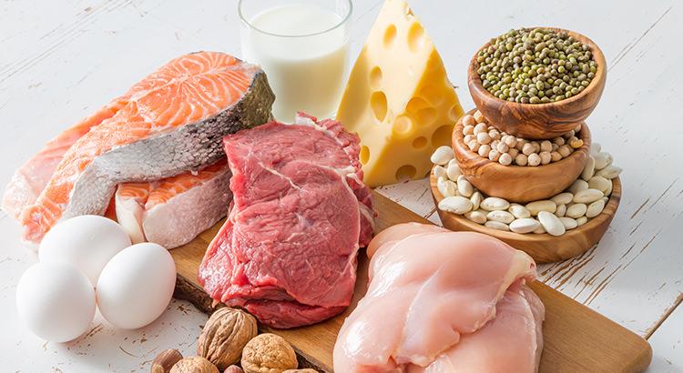 体をつくるもとになる 「タンパク質」