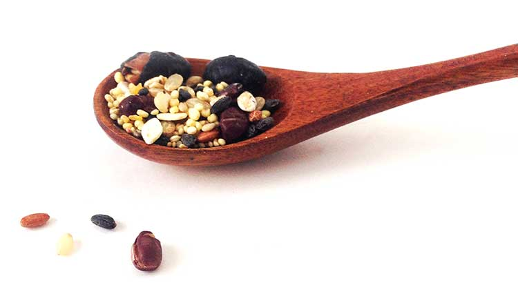 薬食同源① ~食事で体質改善、病気にならない体になる!~