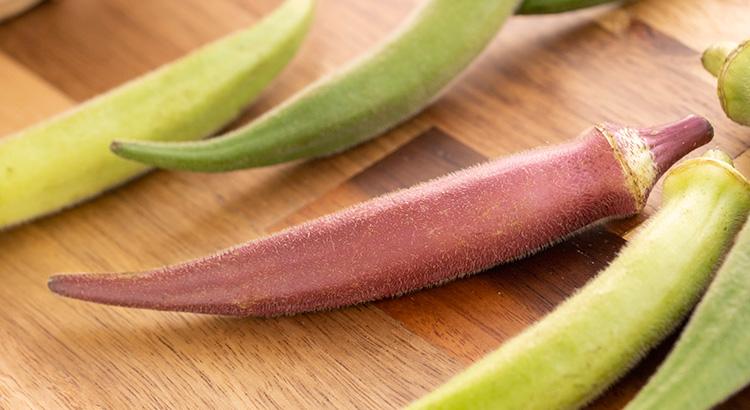 野菜を食べよう!③~日本の珍しい野菜~