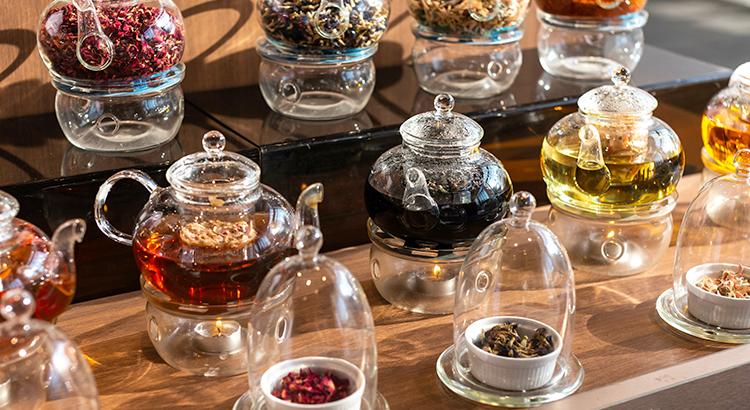 身近だけど奥深いお茶の世界を知ろう② ~お茶の発酵とそれぞれの特徴~